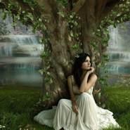 lavanderya's profile photo