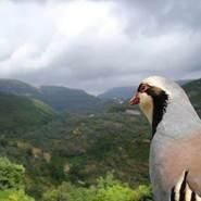 samirsaqr4's profile photo