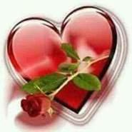 salimh4's profile photo