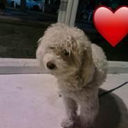 Marisarubio's profile photo