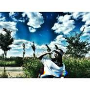 levinaz's profile photo