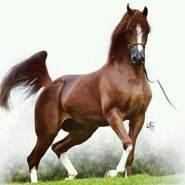 marcoa342's profile photo