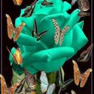 rahmanaltmimi971's profile photo