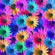 ledy_1990's Waplog profile image