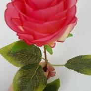 gului890's profile photo
