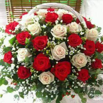 fatimafati39_Tanger-Tetouan-Al Hoceima_Single_Female