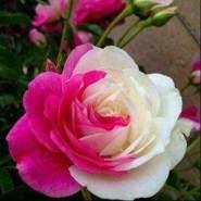 user_imrby93146's profile photo