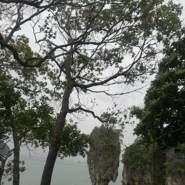 amina2183's profile photo