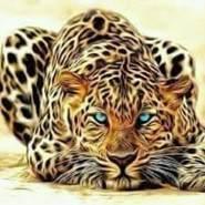 abdullag10's profile photo