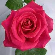 user_lr54730's profile photo