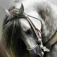 hazemd17's profile photo