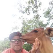 paulol221's profile photo