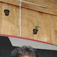 somchaymanjit's profile photo