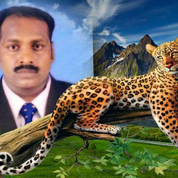 johnsonraj000_Tamil Nadu_Kawaler/Panna_Mężczyzna