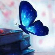 esraa_ana's profile photo