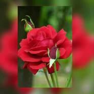 user_vt453's profile photo