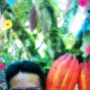 rojasgjillermovictor's profile photo