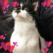 ronaldwillemsen's profile photo