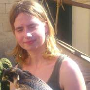 oilva487's profile photo