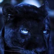 elchin_maksudov's profile photo