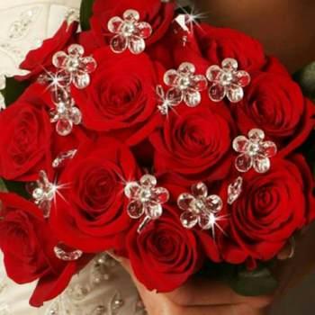 chawwq46_Rabat-Sale-Kenitra_Single_Female