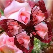 salwasalwa_sh212's profile photo