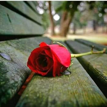 user_sxpv54_Makkah Al Mukarramah_Single_Male