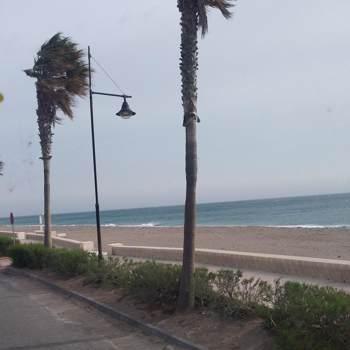 josec8453_Murcia Region De_โสด_ชาย