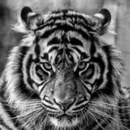 user383642396's profile photo