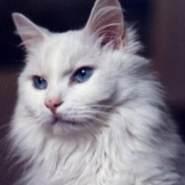 nana0505's profile photo