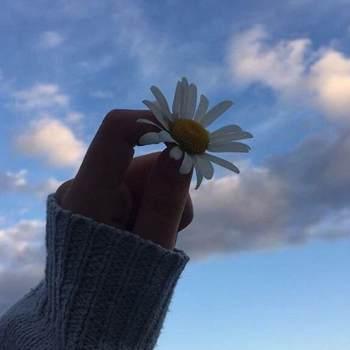 dinaammar_Gaza_Single_Female