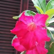 am906477's profile photo
