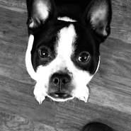 drakes14's profile photo