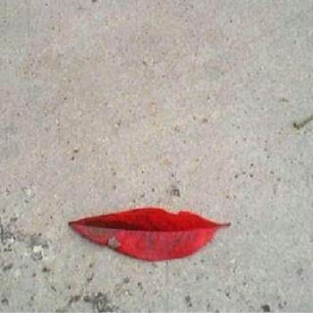 farzanehf_South Carolina_Single_Female
