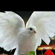 user_wynx09651's profile photo