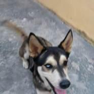 luism9134's profile photo