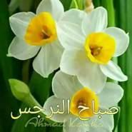 mhrana16's profile photo