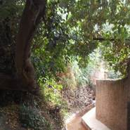 Abdelm188's profile photo