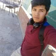 gustavocopa1's profile photo