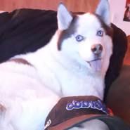 nikkolaus's profile photo