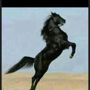 kuwaitk25's profile photo