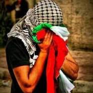 mohammadg187's profile photo