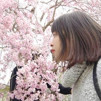 Quynh_93hd_Niigata_Single_Female