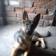 fernandoo517's profile photo
