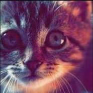 ayaa4097's profile photo