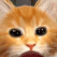 antojuliet's profile photo