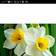user_al85602's profile photo
