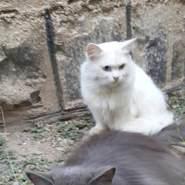 khalilw25's profile photo