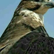 hajik649's profile photo