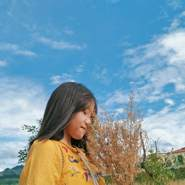 linhl643's profile photo